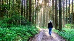 respite care - nature walk