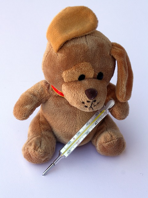 Teddy with thermometer