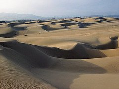 Sand Dunes photo courtesy of Mike Baird (Flickr)
